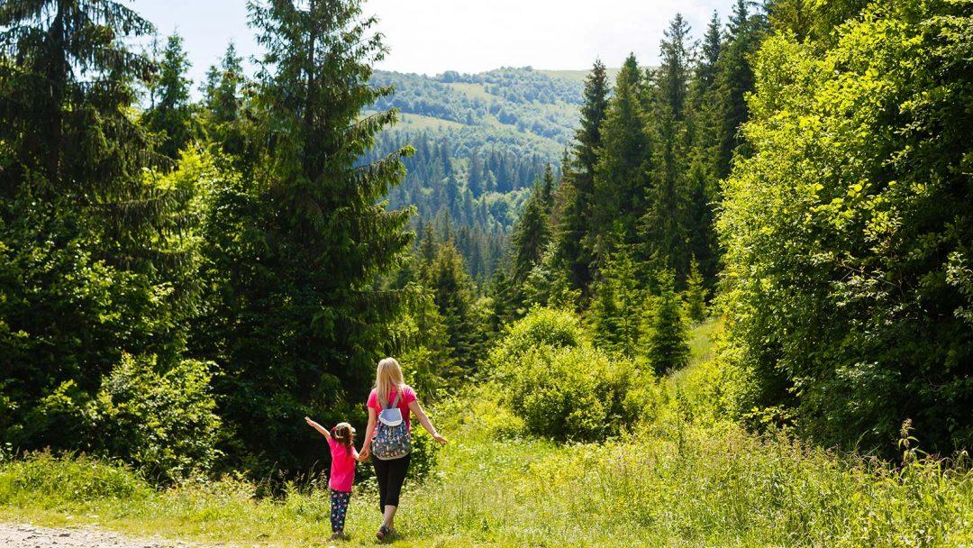 Angebot Rucksack packen Thüringer Wald Oberhof direkt am Wald Wandern Rennsteig Wandertour Wanderweg Wandertipp Höhenlage Waldweg Grenzadler Rast Outdoor Action Draußen unterwegs in der Natur Mann Frau Kind Alleinerziehend Familie Paar